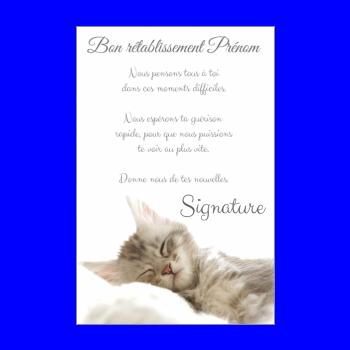 carte chat retablissement blanc gris