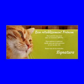 carte chat retablissement vert marron
