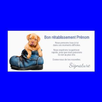 carte chien retablissement bleu marron chaussure animaux