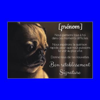 carte chien retablissement noir marron