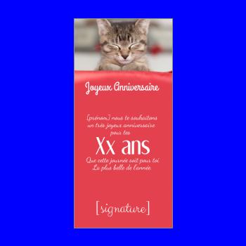 carte anniversaire joyeux chat rouge