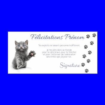 carte felicitation chat gris