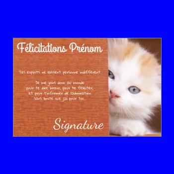 carte felicitation chat marron