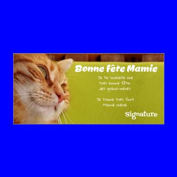 carte grand mere fete chat vert marron