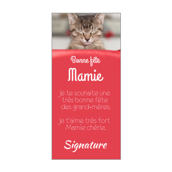 carte grand mere fete chat rouge