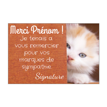 carte remerciement chat merci marron