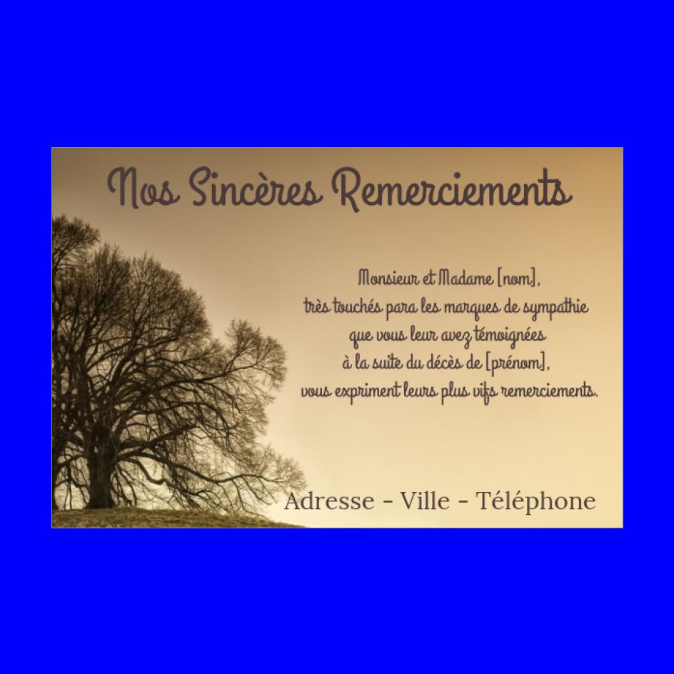 Carte Remerciement Deces Condoleances Merci Arbre Gratuit A Imprimer Carte 2412