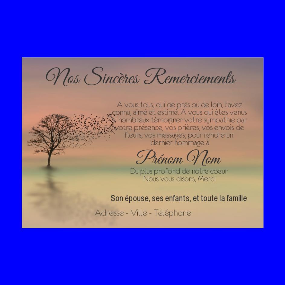 Carte Remerciement Deces Condoleances Oiseau Merci Gratuit A Imprimer Carte 2677