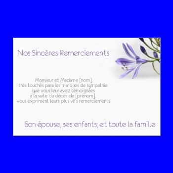 Carte Remerciement Deces Condoleances Fleur Merci Mauve