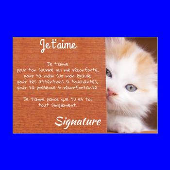 carte voeux chat amour marron
