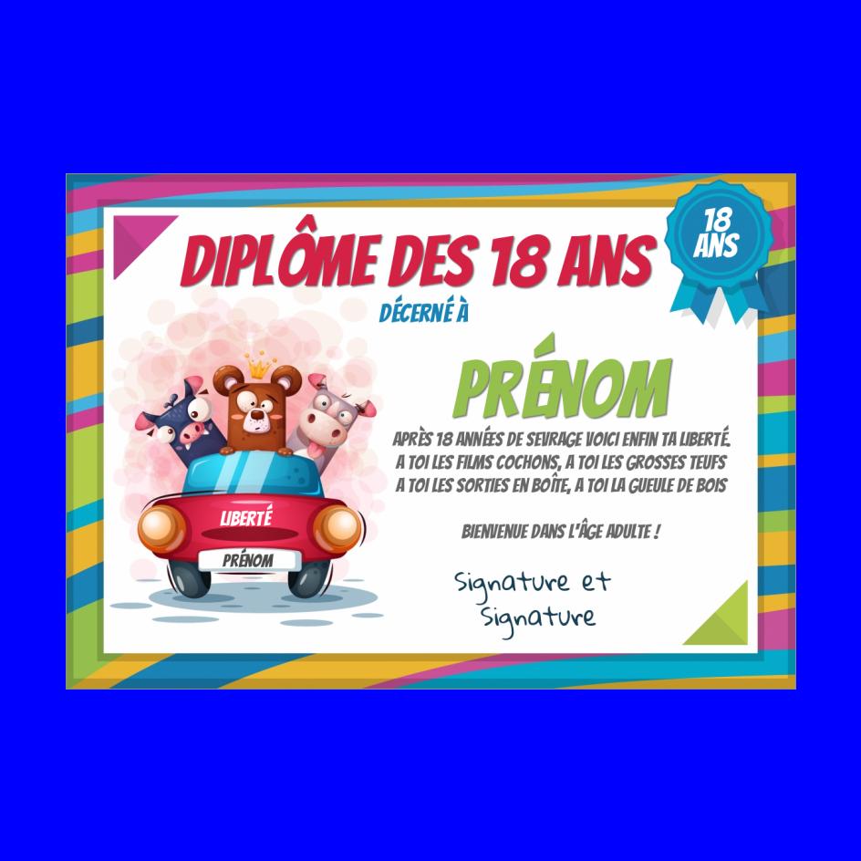 Plus adapté Carte Diplome Anniversaire Humour 18 Ans à imprimer (carte 3237) MZ-36