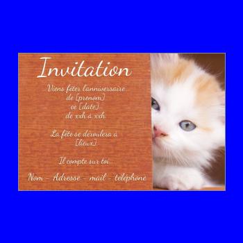 Bien-aimé Carte d'invitation pour un anniversaire d'enfants à imprimer gratuit LJ14