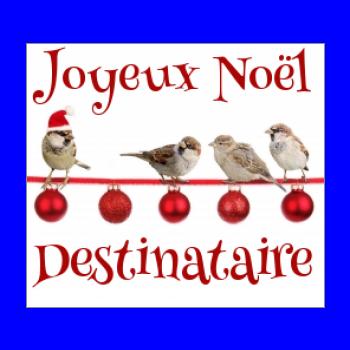 etiquette cadeau noel oiseau rouge boule animaux
