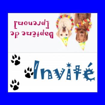 etiquette bapteme table chien animaux