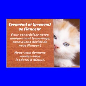 carte invitation faire part fiancailles chat marron