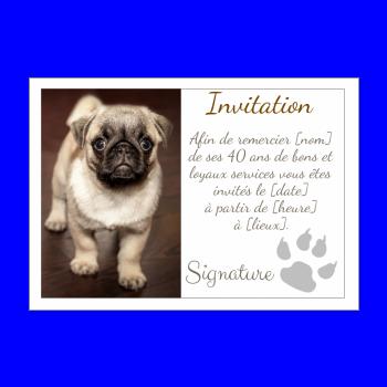 carte invitation retraite chien marron blanc