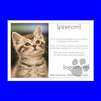 carte anniversaire joyeux chat blanc animaux