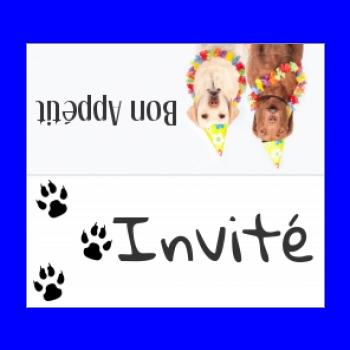 etiquette marque place table chien blanc