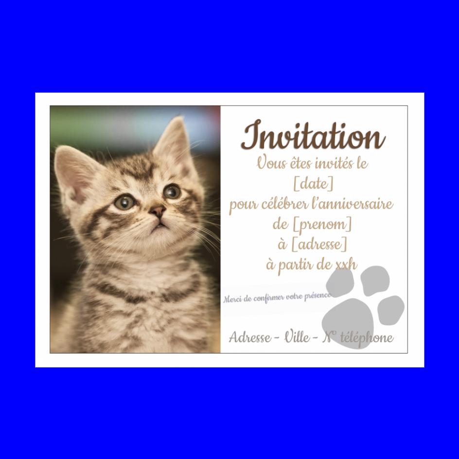 Carte Invitation Anniversaire Chat Blanc Animaux gratuit à imprimer (carte 31)
