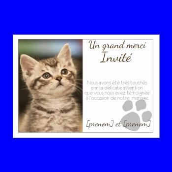 carte mariage remerciement chat merci animaux