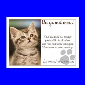 carte mariage remerciement chat merci blanc